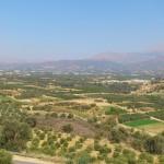 landwirtschaft-kreta