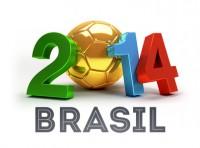 WM Brazil 2014